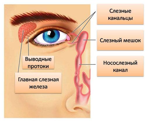 slyoznaya-sistema